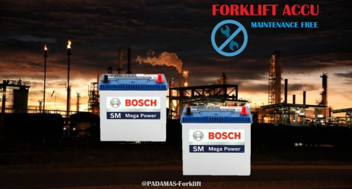 Related Product Accu 2 bosch2